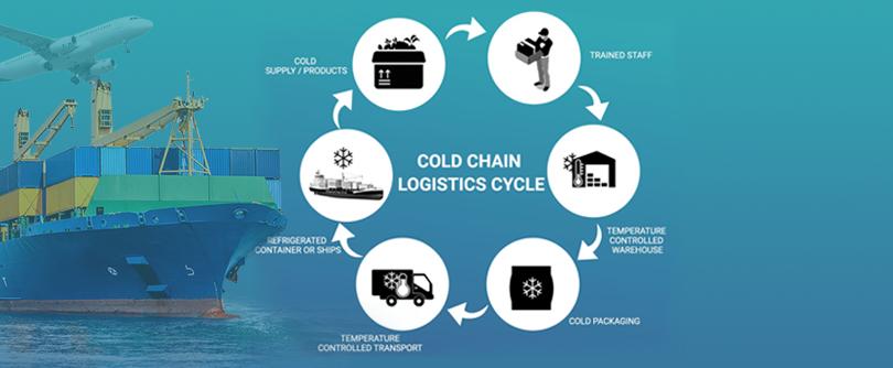 cold chain logistics
